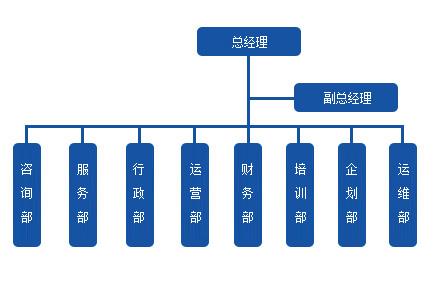{公司架构